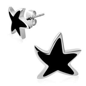 Серьги гвоздики звездочки 316 Steel ERR
